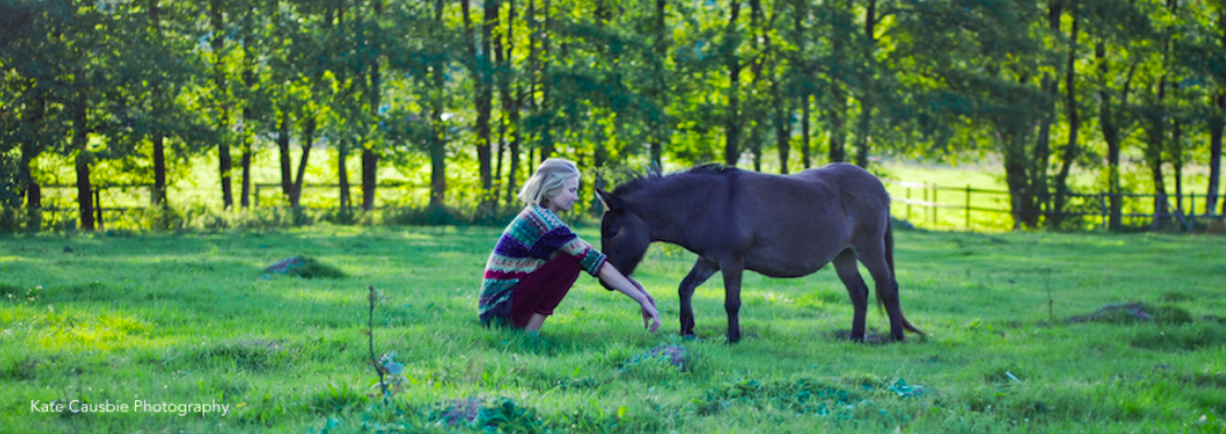 Embodiment with horses